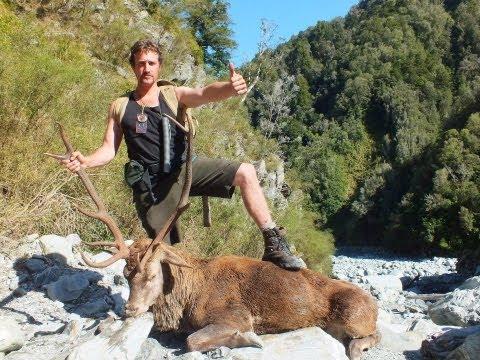 make your own red deer roaring horn