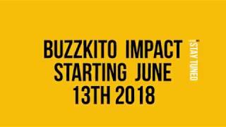 Buzzkito Impact for happy entrepreneurs