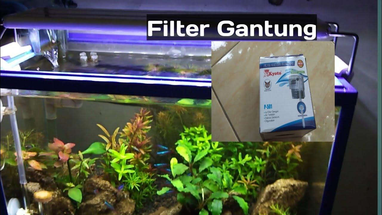 Cara memasang filter gantung aquarium P-501 - YouTube