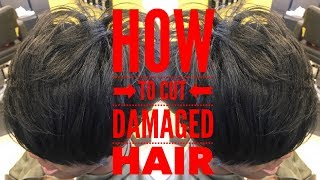 JUST CUT DAMAGED HAIR! HOW TO MAKE DAMAGE HAIR HEALTHIER