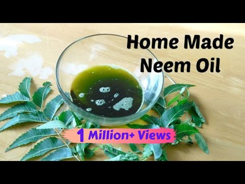 DIY Neem Oil |Home Remedy for Lice, Hair Thinning & Dandruff