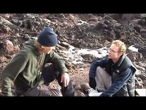 The Geology Of Kingsand