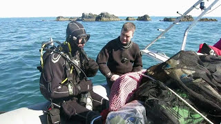Scuba diving in the Firth of Forth, Scotland