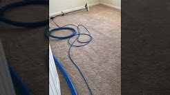 Revive Carpet Cleaning, Green Cove Springs. Rental property