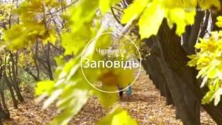 видео Доля удачи (Абхазские народные сказки)