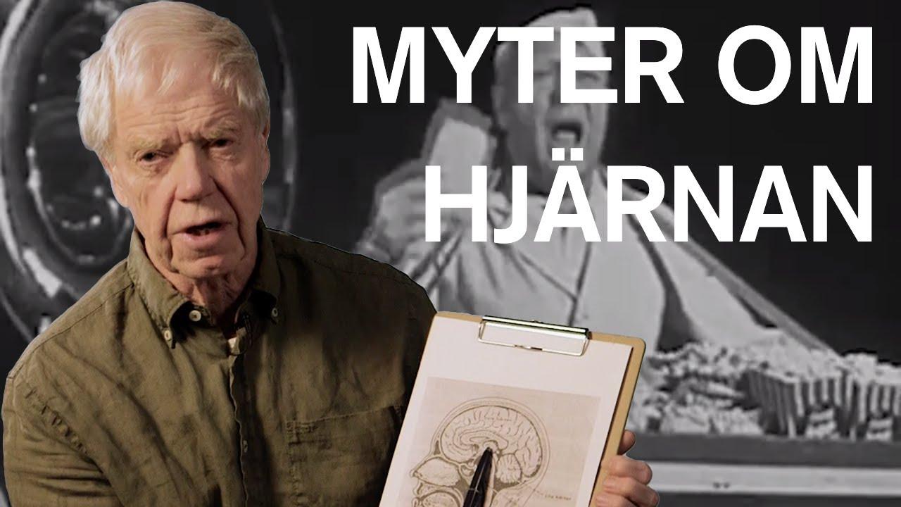 Tre myter om hjärnan - Hjärnkanalen