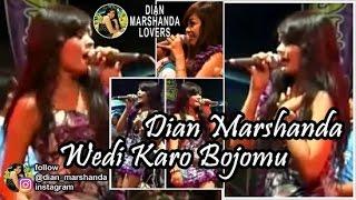 Dian Marshanda - Wedi Karo Bojomu