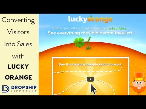 Converting Visitors Into Sales With Lucky Orange
