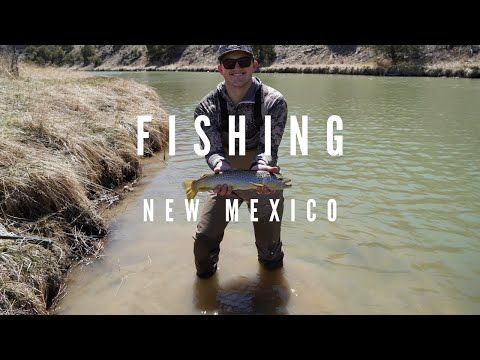COVID Fishing - New Mexico