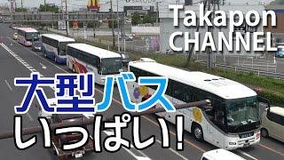 バス バス バス! 大型バスいっぱい! 23分間ずっとバス  bus video  Tourist bus 旅游大巴 in JAPAN 2017 MAY