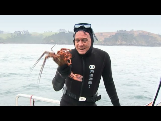 creatures of the deep The Wildlife Man TV Series