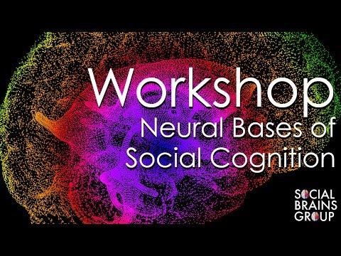 Mesa 2 - Workshop Neural Bases of Social Cognition
