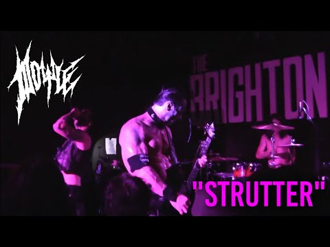 Doyle - Strutter - Live At The Brighton Bar - April 19th 2017