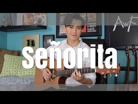 Señorita - Shawn Mendes, Camila Cabello - Cover (fingerstyle Guitar) Andrew Foy