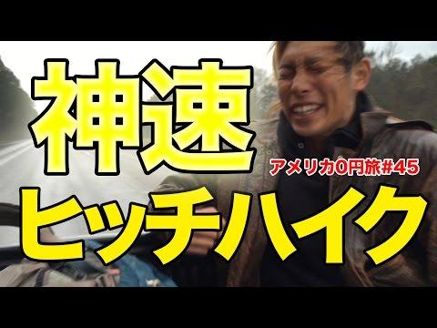 【衝撃】荷台にタヌキの死骸【アメリカ0円横断#29】