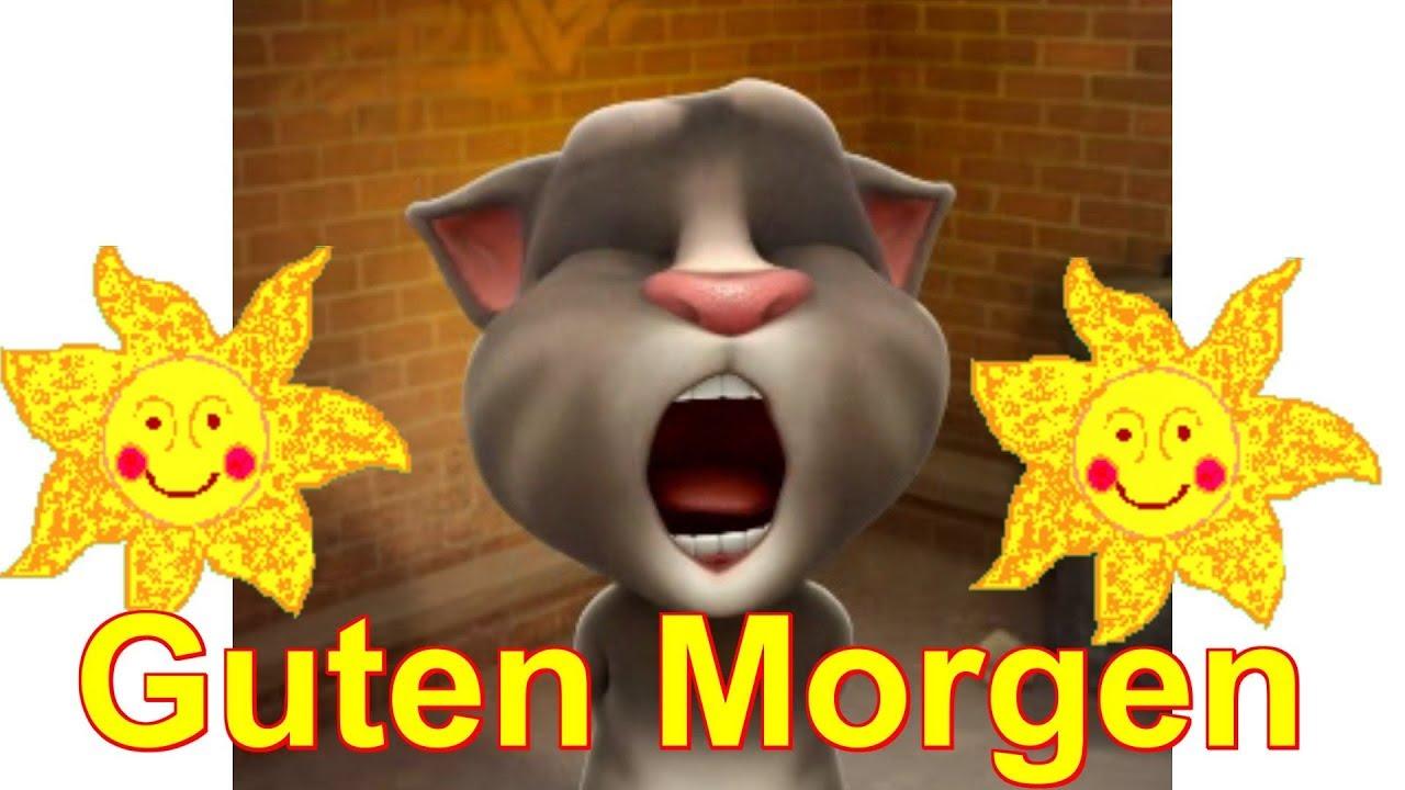 Morgen Schon Wach Einen Schönen Tag Wenig Arbeit Talking Tom Sprechende Katze