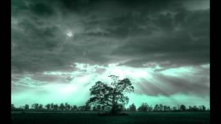 Netsky - Iron Heart (VIP Remix)