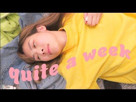 QUITE A WEEK // CatCreature