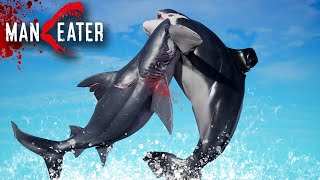 JAWS IN SEAWORLD !!! - Maneater Gameplay | Part 6