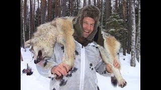 Охота на волков 2019