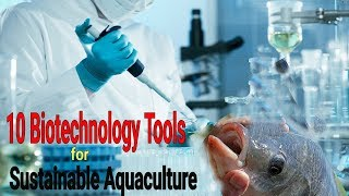 Top 10 Biotechnology Tools for Sustainable Aquaculture