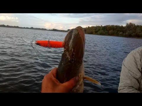 Глубоководный твичинг 5 забросов 5 судаков DEPS Balisong Longbill .