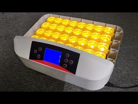 32 56 Egg Incubator Demo Youtube