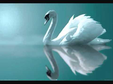 Swan Lake Ballet (Tchaikovsky) -Act I: IX. Finale (Andante)