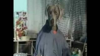Sesame Street - Batty The Nude Model