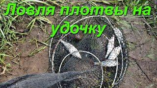 Рыбалка В Подмосковье Ловля Плотвы На Удочку Весна Озеро