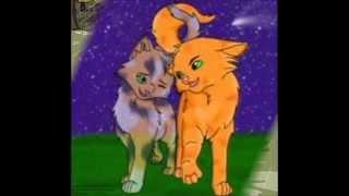 Коты-Воители Пестролистая