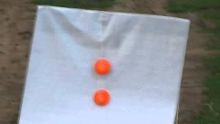 Стрельба двенадцатым калибром, на 60 и 110 метров.