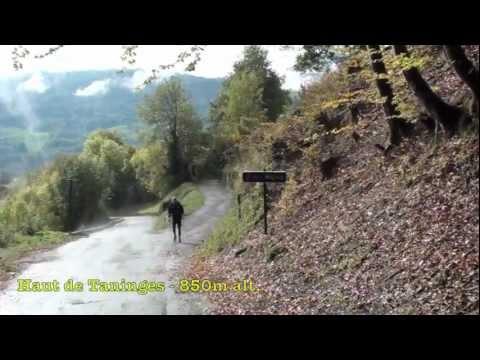 Maurice Manificat - Training