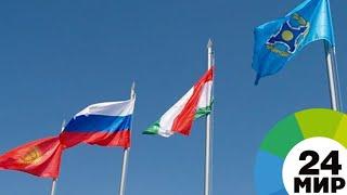ОДКБ готова сотрудничать с НАТО - МИР 24