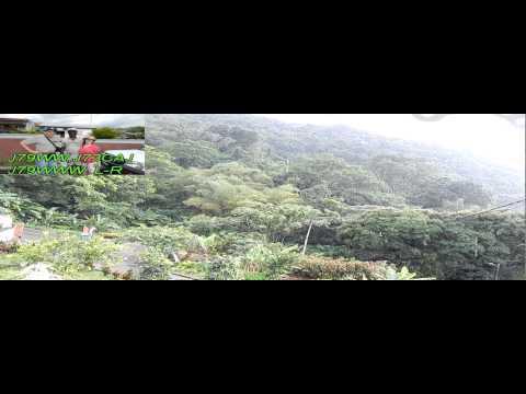 Dominica Caribbean Rain Forest - J79WW 2015