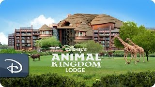Disney's Animal Kingdom Lodge | Walt Disney World
