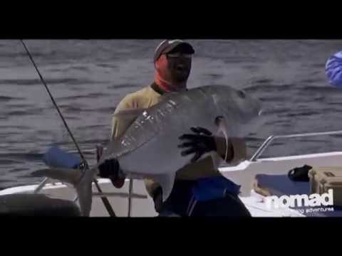 Nomad Sportfishing - Ashmore Reef Yellowfin, GTs & Doggies Casting