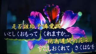 こんばんは~~(^◇^)・・・今夜はこの歌を唄ってみました・・・カラオ...