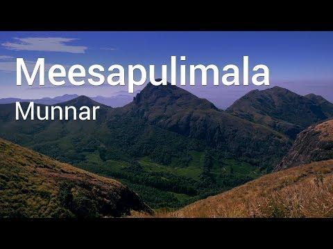 Trekking to Meesapulimala | Munnar