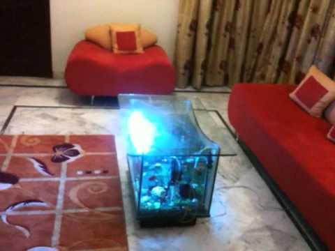 Superieur My Center Table Aquarium 1