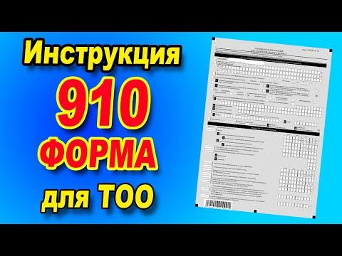 910 форма для ТОО / Инструкция по заполнению
