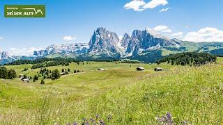 Seiser Alm Sommer - Estate all'Alpe di Siusi - Alpe di Siusi summer (3 min)