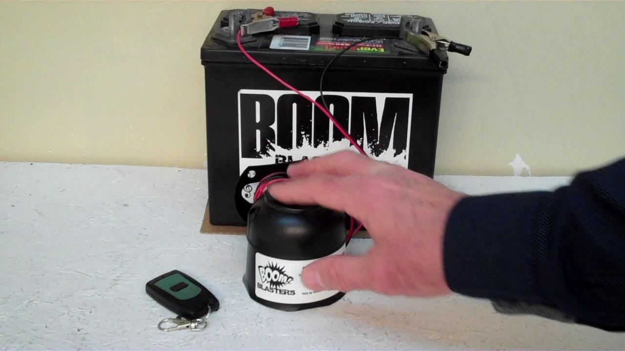 Dolphin Porpoise Sounds Car Horn Wireless - YouTube