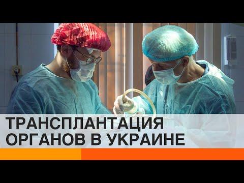 Трансплантация органов в