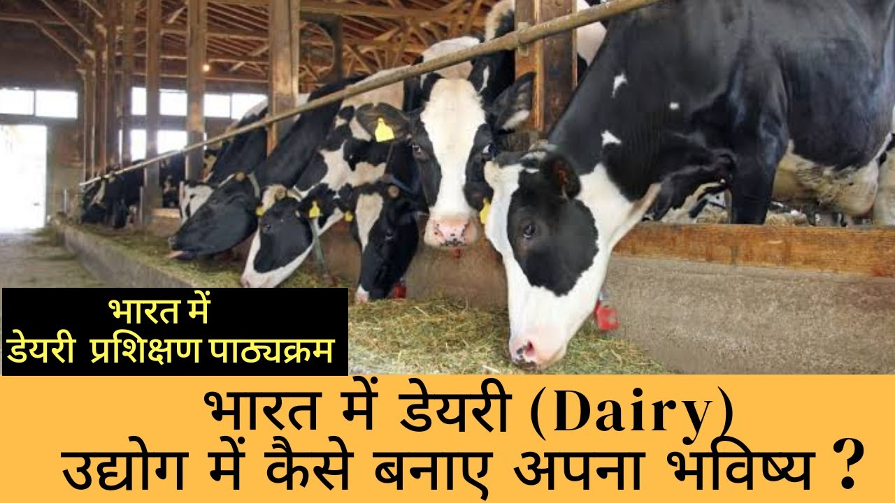 Dairy Farming Course in India - Dairy Training Course