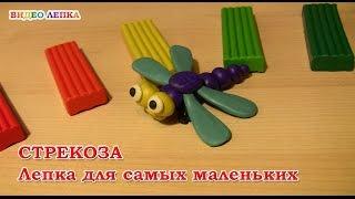Стрекоза из пластилина. Лепка для детей 3 - 4 лет | Видео Лепка