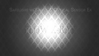 Safelight w/Swivel & Optical Sensor Ea - Flow X-Ray