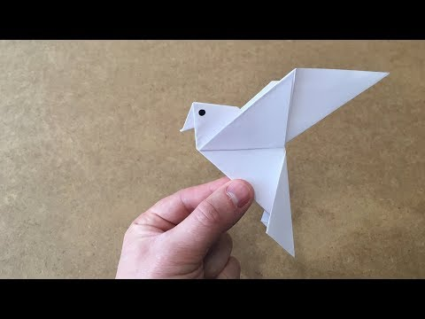 Origami Birds   How to make a paper parrot   How to make a paper bird - Origami