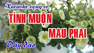 Karaoke Vọng cổ: TÌNH MUỘN MAU PHAI - Dây Đào - Tác giả: Nguyễn Hữu Nghĩa