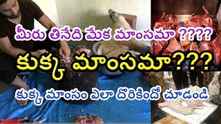 1000 kg DOG Meet Chennai ||Eat Dog Meat in Resturents || Dog Meet seized || Abba Chaa